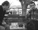 author: ilan amihai, IL title: chess player